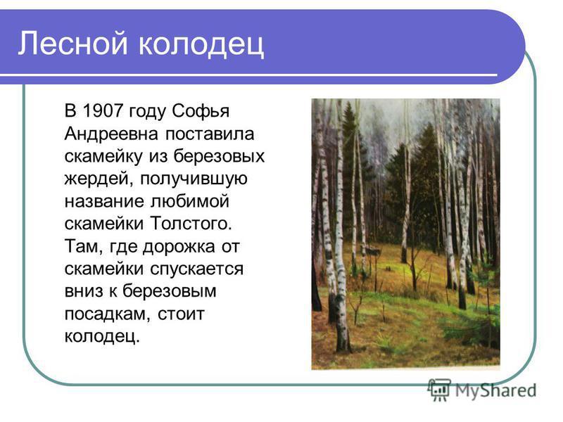Лесной колодец В 1907 году Софья Андреевна поставила скамейку из березовых жердей, получившую название любимой скамейки Толстого. Там, где дорожка от скамейки спускается вниз к березовым посадкам, стоит колодец.