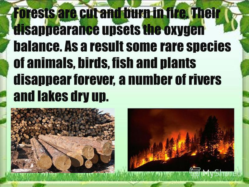 Forests are cut and burn in fire. Their disappearance upsets the oxygen balance. As a result some rare species of animals, birds, fish and plants disappear forever, a number of rivers and lakes dry up.