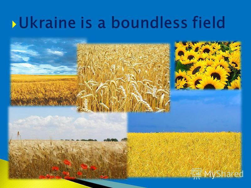 Ukraine is a boundless field