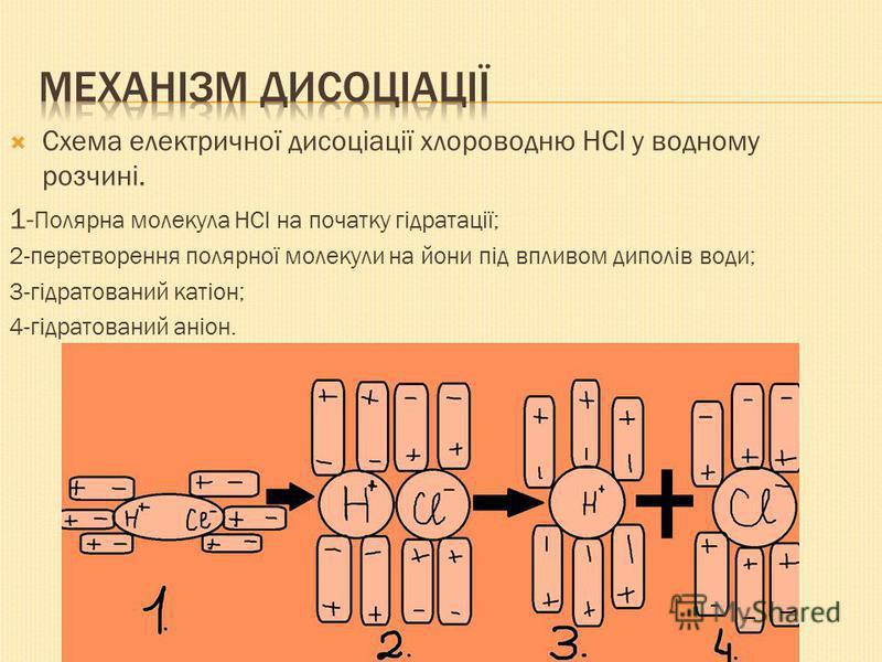 Схема електричної дисоціації хлороводню HCl у водному розчині. 1- Полярна молекула HCl на початку гідратації; 2-перетворення полярної молекули на йони під впливом диполів води; 3-гідратований катіон; 4-гідратований аніон.