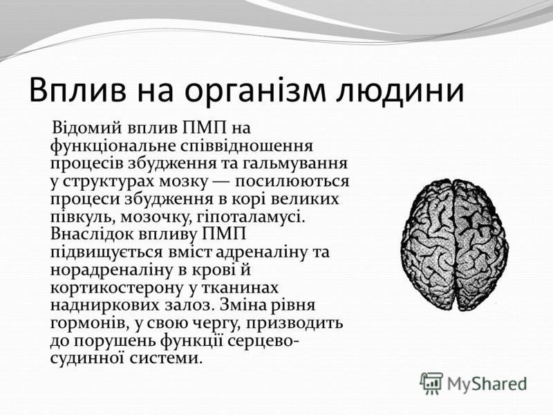 Вплив на організм людини Відомий вплив ПМП на функціональне співвідношення процесів збудження та гальмування у структурах мозку посилюються процеси збудження в корі великих півкуль, мозочку, гіпоталамусі. Внаслідок впливу ПМП підвищується вміст адрен