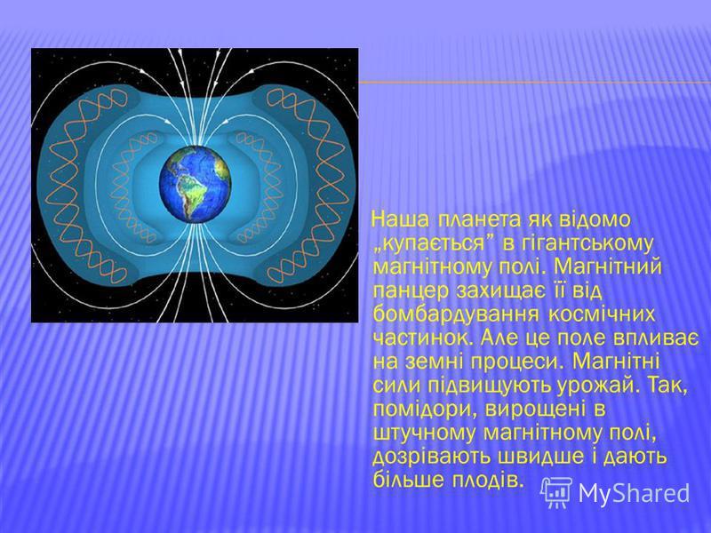 Наша планета як відомо купається в гігантському магнітному полі. Магнітний панцер захищає її від бомбардування космічних частинок. Але це поле впливає на земні процеси. Магнітні сили підвищують урожай. Так, помідори, вирощені в штучному магнітному по