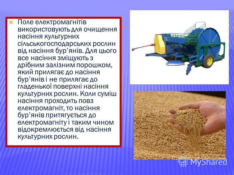 Поле електромагнітів використовують для очищення насіння культурних сільськогосподарських рослин від насіння бурянів. Для цього все насіння зміщують з дрібним залізним порошком, який прилягає до насіння бурянів і не прилягає до гладенької поверхні на