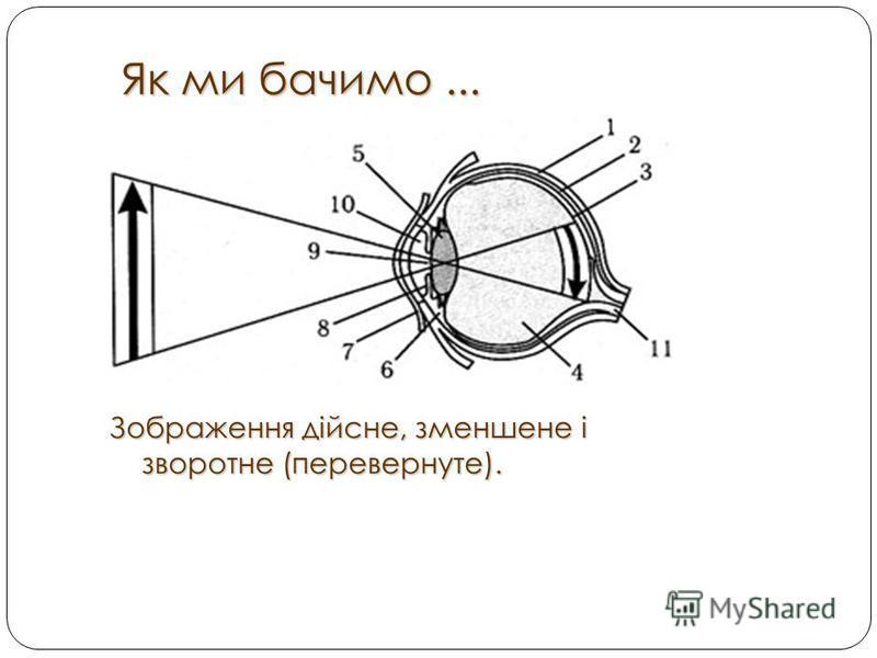 Як ми бачимо... Як ми бачимо... Зображення дійсне, зменшене і зворотне (перевернуте).