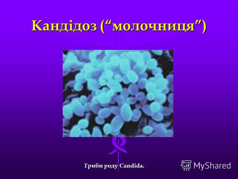 Кандідоз (молочниця) Гриби роду Candida.