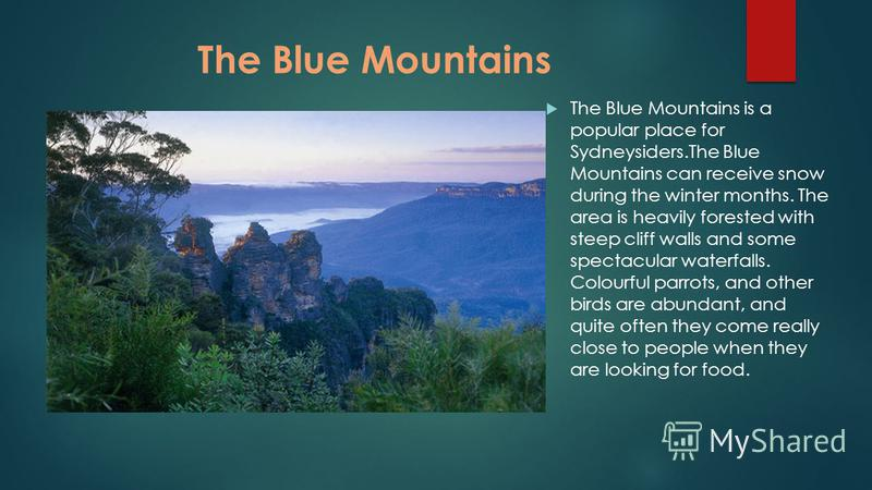 The Blue Mountains The Blue Mountains is a popular place for Sydneysiders.The Blue Mountains can receive snow during the winter months. The area is heavily forested with steep cliff walls and some spectacular waterfalls. Colourful parrots, and other