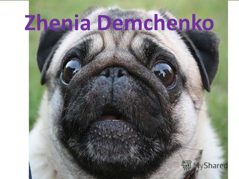 Zhenia Demchenko