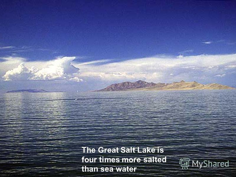 The Great Salt Lake is four times more salted than sea water