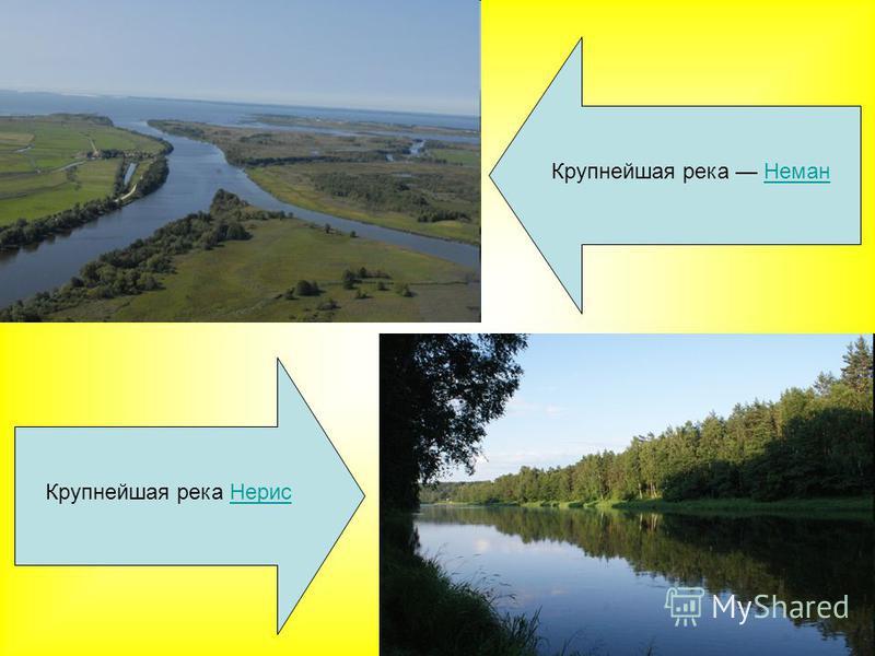 Крупнейшая река Нерис Нерис Крупнейшая река Неман Неман