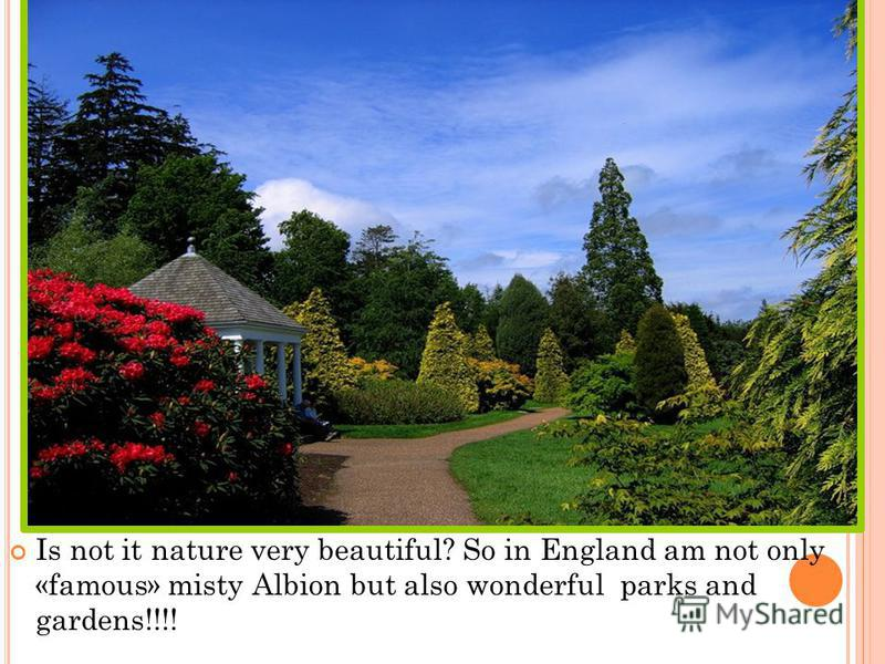 Is not it nature very beautiful? So in England am not only «famous» misty Albion but also wonderful parks and gardens!!!!