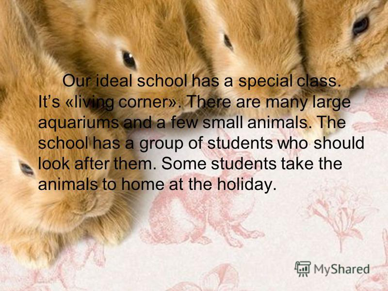 Our ideal school has a special class. Its «living corner». There are many large aquariums and a few small animals. The school has a group of students who should look after them. Some students take the animals to home at the holiday.