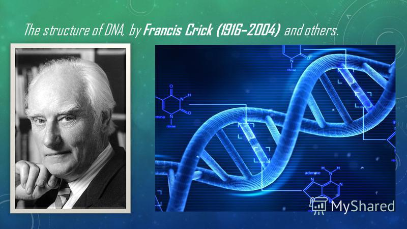 The structure of DNA, by Francis Crick (1916–2004) and others.