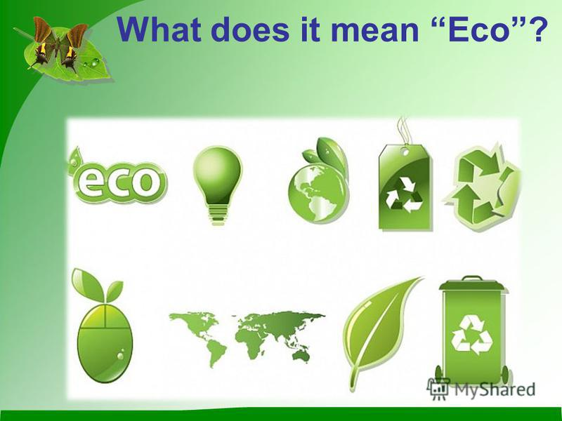 What does it mean Eco?