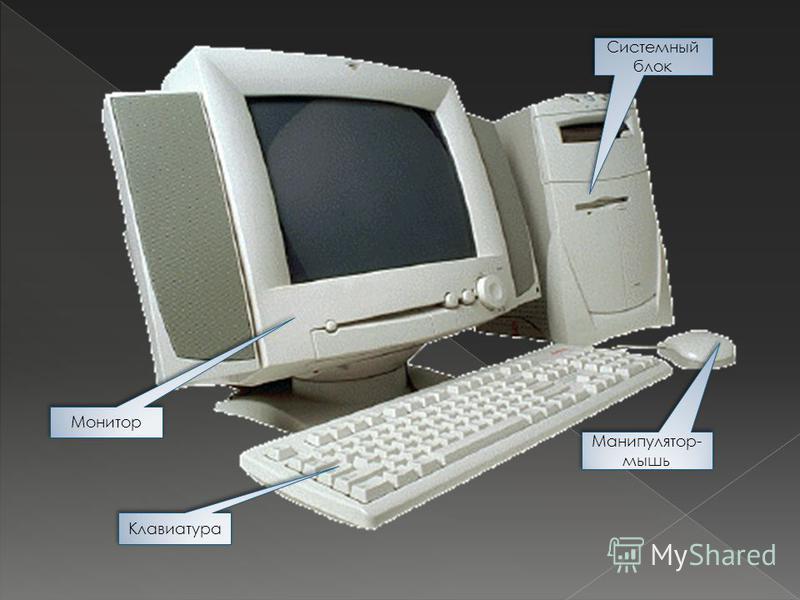 Клавиатура Системный блок Манипулятор- мышь Монитор