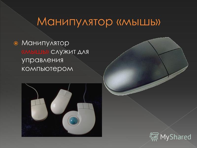 Манипулятор «мышь» служит для управления компьютером