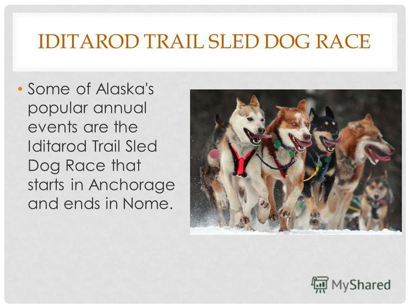 IDITAROD TRAIL SLED DOG RACE Some of Alaska's popular annual events are the Iditarod Trail Sled Dog Race that starts in Anchorage and ends in Nome.
