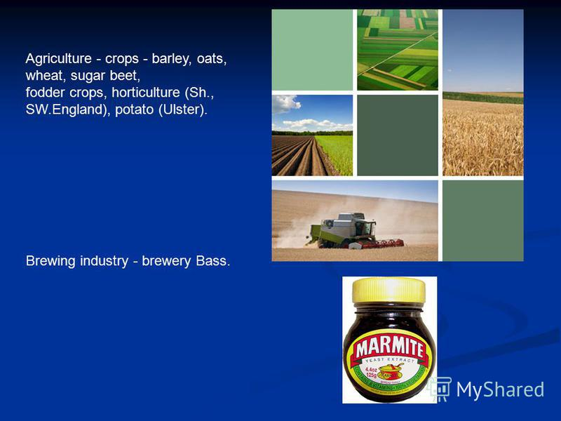 Agriculture - crops - barley, oats, wheat, sugar beet, fodder crops, horticulture (Sh., SW.England), potato (Ulster). Brewing industry - brewery Bass.
