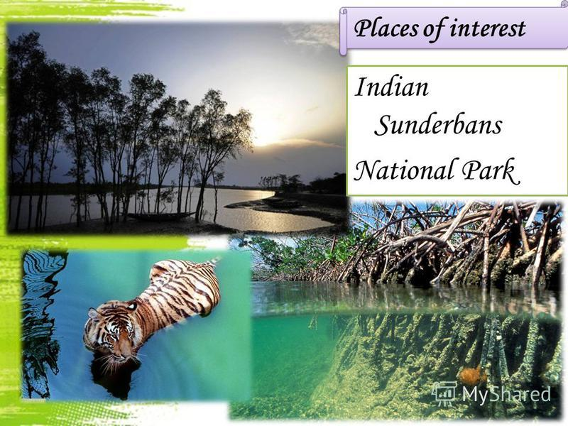 Places of interest Indian Sunderbans National Park