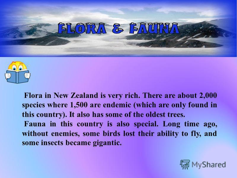 Flora in New Zealand is very rich. There are about 2,000 species where 1,500 are endemic (which are only found in this country). It also has some of the oldest trees. Fauna in this country is also special. Long time ago, without enemies, some birds l