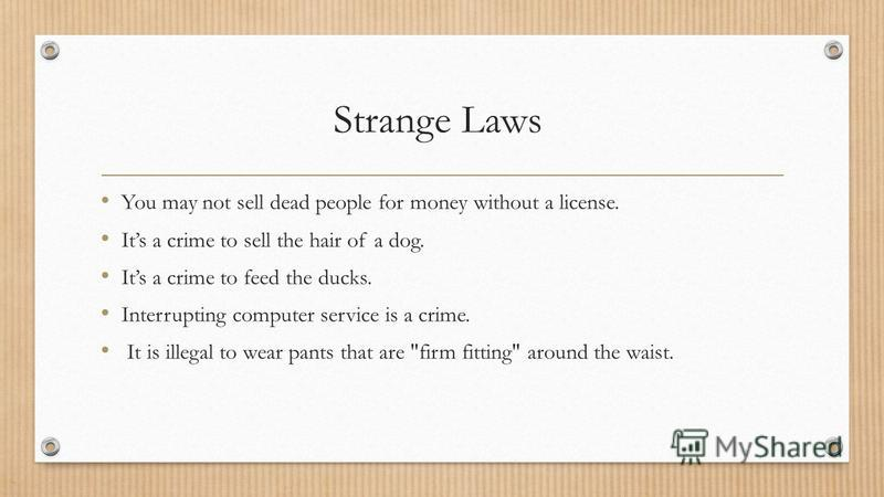 Strange Laws You may not sell dead people for money without a license. Its a crime to sell the hair of a dog. Its a crime to feed the ducks. Interrupting computer service is a crime. It is illegal to wear pants that are