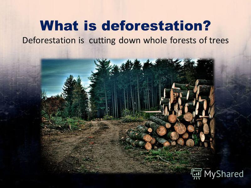 What is deforestation? Deforestation is cutting down whole forests of trees
