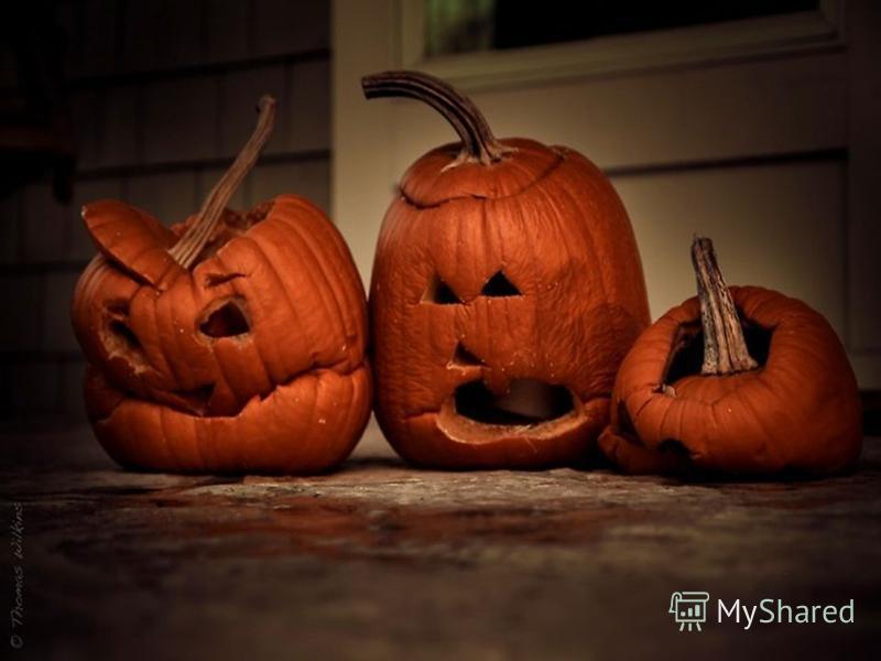 Сегодня последний день октября, во многих странах это считается днём перехода в тёмный сезон, окончанием урожаев и возможностью поиграться с коварными силами духов и, кто знает, заглянуть в своё будущее. То есть это Halloween. Чуть больше истории Хэл