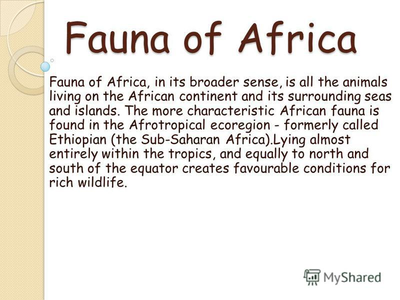 Fauna of Africa Fauna of Africa, in its broader sense, is all the animals living on the African continent and its surrounding seas and islands. The more characteristic African fauna is found in the Afrotropical ecoregion - formerly called Ethiopian (