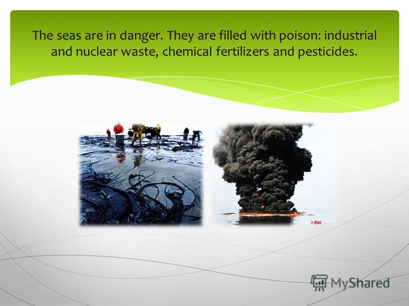 The seas are in danger. They are filled with poison: industrial and nuclear waste, chemical fertilizers and pesticides.