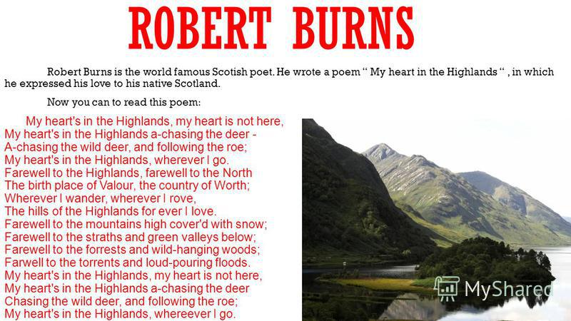 ROBERT BURNS Robert Burns is the world famous Scotish poet. He wrote a poem My heart in the Highlands, in which he expressed his love to his native Scotland. Now you can to read this poem: My heart's in the Highlands, my heart is not here, My heart's
