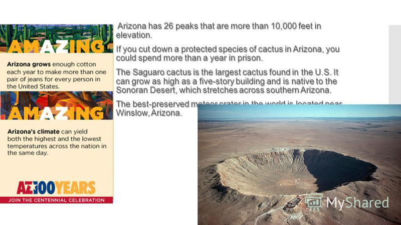 Arizona has 26 peaks that are more than 10,000 feet in elevation. If you cut down a protected species of cactus in Arizona, you could spend more than a year in prison. The Saguaro cactus is the largest cactus found in the U.S. It can grow as high as