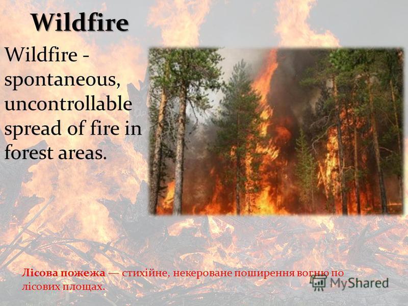 Лісова пожежа стихійне, некероване поширення вогню по лісових площах. Wildfire Wildfire - spontaneous, uncontrollable spread of fire in forest areas.