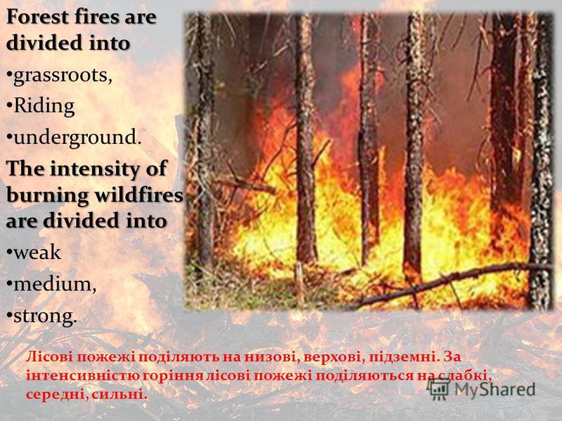 Лісові пожежі поділяють на низові, верхові, підземні. За інтенсивністю горіння лісові пожежі поділяються на слабкі, середні, сильні. Forest fires are divided into grassroots, Riding underground. The intensity of burning wildfires are divided into wea