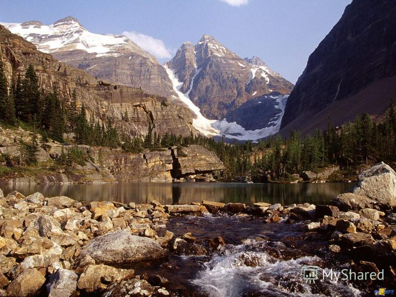 The majority of Canada is still wilderness. This makes Canada a popular spot for hunting and fishing.