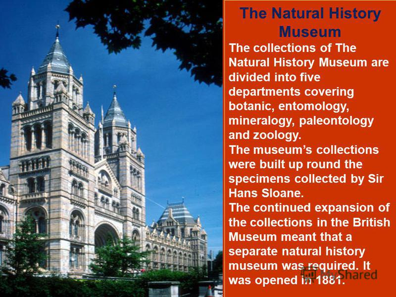 The Natural History Museum The collections of The Natural History Museum are divided into five departments covering botanic, entomology, mineralogy, paleontology and zoology. The museums collections were built up round the specimens collected by Sir