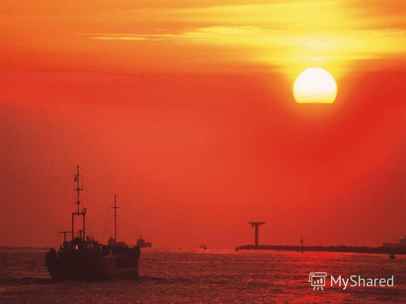 Красное солнце. Красное лето.