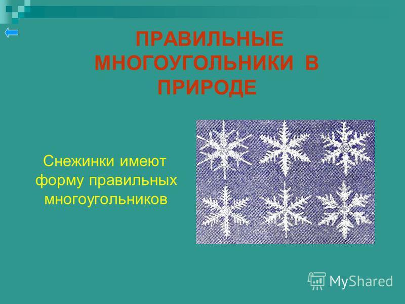 ПРАВИЛЬНЫЕ МНОГОУГОЛЬНИКИ В ПРИРОДЕ Снежинки имеют форму правильных многоугольников