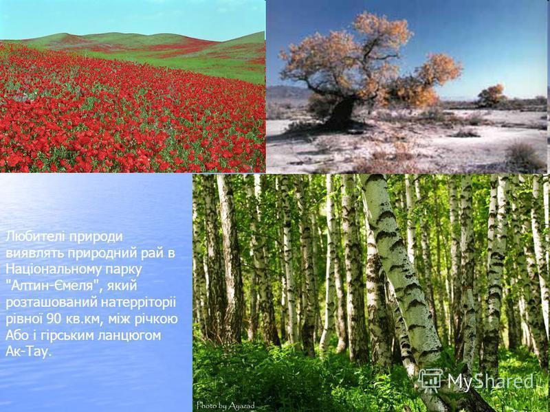Любителі природи виявлять природний рай в Національному парку Алтин-Ємеля, який розташований натерріторіі рівної 90 кв.км, між річкою Або і гірським ланцюгом Ак-Тау.