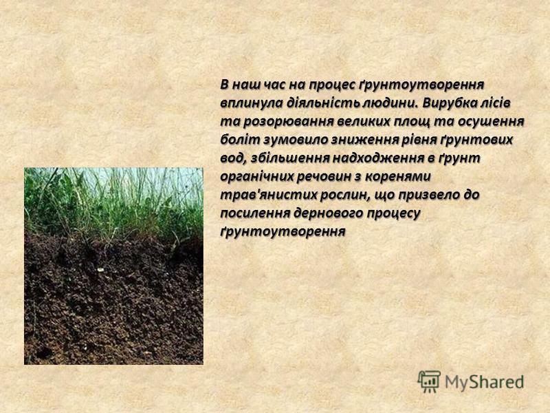 В наш час на процес ґрунтоутворення вплинула діяльність людини. Вирубка лісів та розорювання великих площ та осушення боліт зумовило зниження рівня ґрунтових вод, збільшення надходження в ґрунт органічних речовин з коренями трав'янистих рослин, що пр