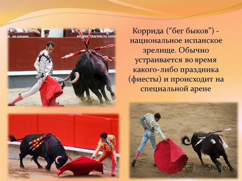 Коррида (бег быков) - национальное испанское зрелище. Обычно устраивается во время какого-либо праздника (фиесты) и происходит на специальной арене