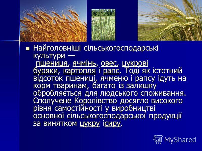 Найголовніші сільськогосподарські культури пшениця, ячмінь, овес, цукрові буряки, картопля і рапс. Тоді як істотний відсоток пшениці, ячменю і рапсу ідуть на корм тваринам, багато із залишку обробляється для людського споживання. Сполучене Королівств
