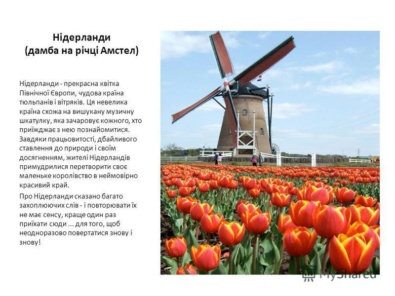 Нідерланди (дамба на річці Амстел) Нідерланди - прекрасна квітка Північної Європи, чудова країна тюльпанів і вітряків. Ця невелика країна схожа на вишукану музичну шкатулку, яка зачаровує кожного, хто приїжджає з нею познайомитися. Завдяки працьовито