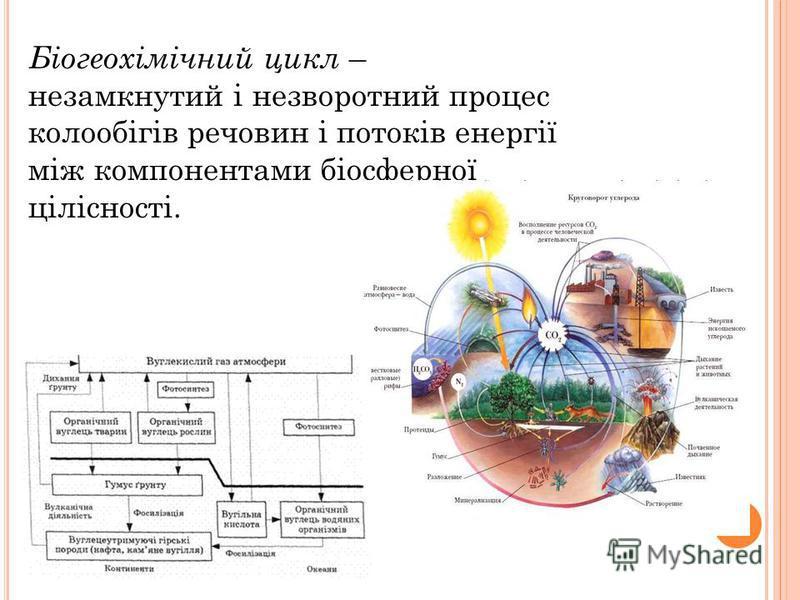 Біогеохімічний цикл – незамкнутий і незворотний процес колообігів речовин і потоків енергії між компонентами біосферної цілісності.