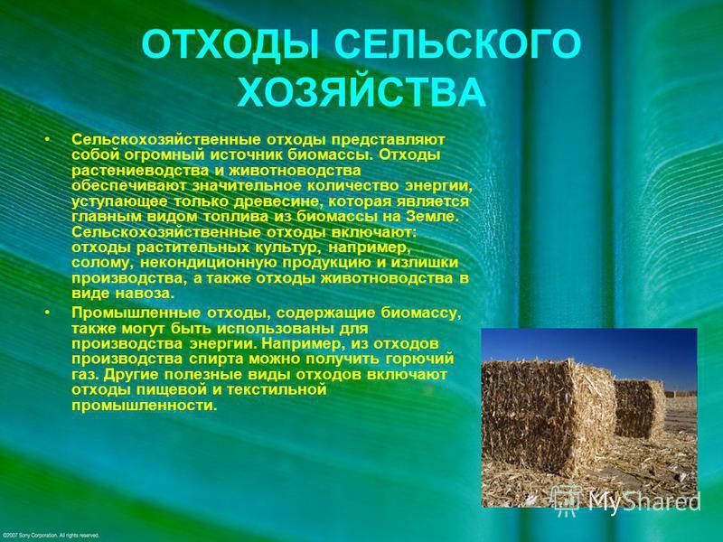 ОТХОДЫ СЕЛЬСКОГО ХОЗЯЙСТВА Сельскохозяйственные отходы представляют собой огромный источник биомассы. Отходы растениеводства и животноводства обеспечивают значительное количество энергии, уступающее только древесине, которая является главным видом то