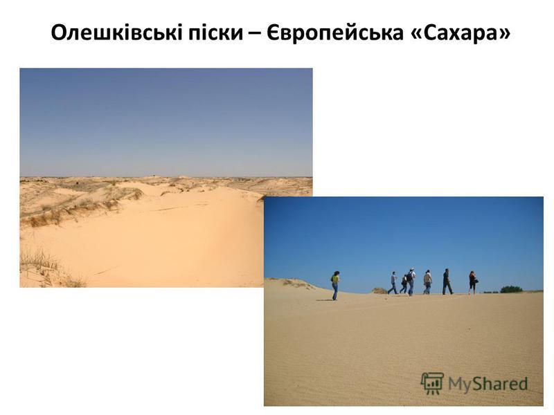 Олешківські піски – Європейська «Сахара»