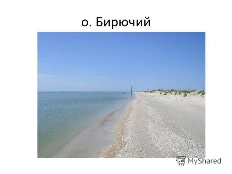 о. Бирючий