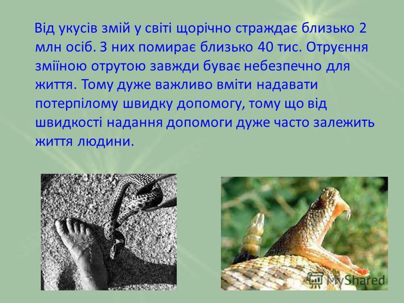 Від укусів змій у світі щорічно страждає близько 2 млн осіб. З них помирає близько 40 тис. Отруєння зміїною отрутою завжди буває небезпечно для життя. Тому дуже важливо вміти надавати потерпілому швидку допомогу, тому що від швидкості надання допомог