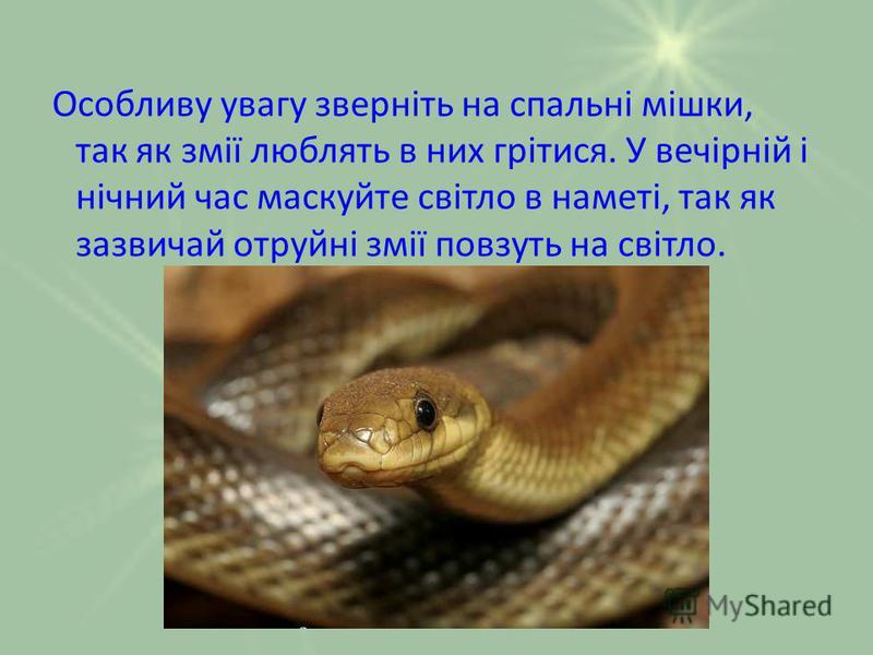 Особливу увагу зверніть на спальні мішки, так як змії люблять в них грітися. У вечірній і нічний час маскуйте світло в наметі, так як зазвичай отруйні змії повзуть на світло.