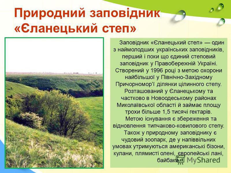 Природний заповідник «Єланецький степ» Заповідник «Єланецький степ» один з наймолодших українських заповідників, перший і поки що єдиний степовий заповідник у Правобережній Україні. Створений у 1996 році з метою охорони найбільшої у Північно-Західном