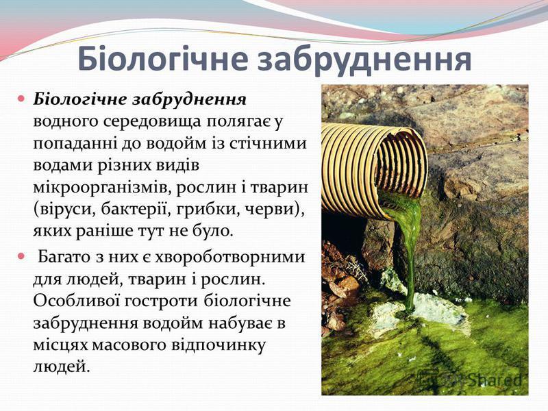 Біологічне забруднення Біологічне забруднення водного середовища полягає у попаданні до водойм із стічними водами різних видів мікроорганізмів, рослин і тварин (віруси, бактерії, грибки, черви), яких раніше тут не було. Багато з них є хвороботворними