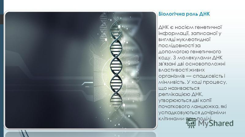 Біологічна роль ДНК ДНК є носієм генетичної інформації, записаної у вигляді нуклеотидної послідовності за допомогою генетичного коду. З молекулами ДНК зв'язані дві основоположні властивості живих організмів спадковість і мінливість. У ході процесу, щ